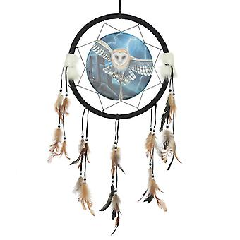 Decorative Heart of the Storm Owl Design Dreamcatcher Medium X 1 Pack