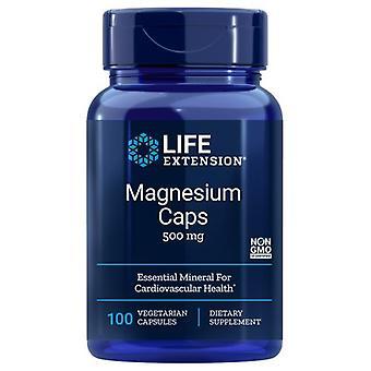 Life Extension Magnesium Caps, 500 mg, 100 Vcaps