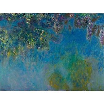 Glyzinien Poster Kunstdruck von Claude Monet