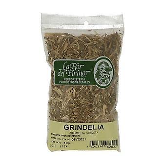 Grindelia herb 50 g