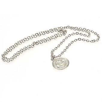 Celtic Silver Plated Pendant & Chain