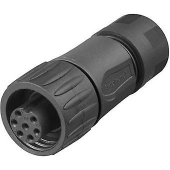 أمفينول C016 30 006 110 12 رصاصة موصل موصل، سلسلة مستقيمة (موصلات): C016 مجموع دبابيس: 6 + PE 1 pc(s)