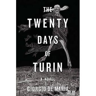 Turin - en roman av Giorgio De Maria - Ramon Glazov tjugo dagar