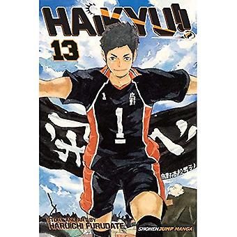 Haikyu!: Volume 13 (Haikyu!!)