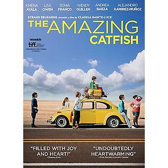 Amazing Catfish [DVD] USA import