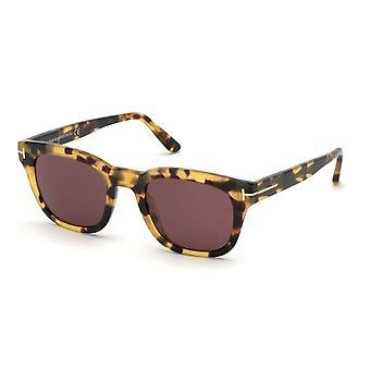 Tom Ford Eugenio TF676 56S Havana/Bordeaux Sunglasses