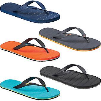Reef Mens Switchfoot Casual Fashion Beach Pool Sommar Flip Flops Thongs Sandaler