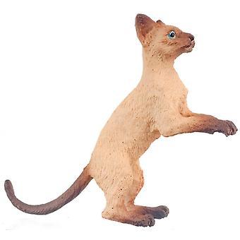 Nukketalo siamilainen kissa nousee jonkin jälkeen 1:12 asteikolla miniatyyri lemmikki