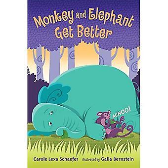Affen und Elefanten lernen besser