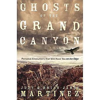 Fantômes du Grand Canyon: Personal rencontre que Will a You sur le bord