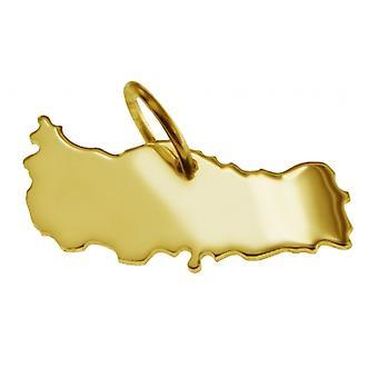 Hänge karta kedja hänge i guldgult-guld i form av KALKON