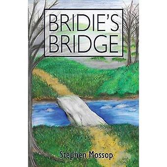 Bridies Bridge by Mossop & Stephen