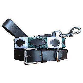 Carlos diaz genuine leather  polo dog collar and lead set cdhkplc11