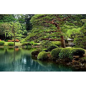 Tapetti Mural Calm Zen Lake
