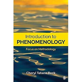 Inleiding tot fenomenologie: Focus op methodologie