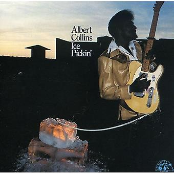 Albert Collins - Ice Pickin' [CD] USA import