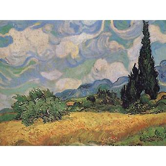 Wheat Field with Cypresses at the Haute Galline near, Vincent Van Gogh