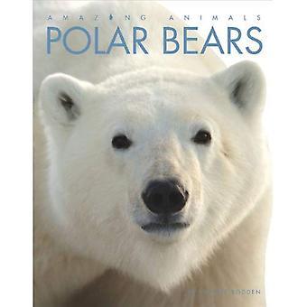 Polar Bears (fantastiska djur (kreativ utbildning Paperback))