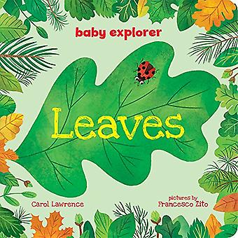 Leaves (Baby Explorer) [Board book]