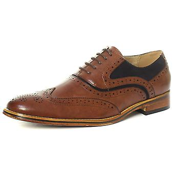 Goor M499B Brown/Navy Mens Oxford Brogue Shoes