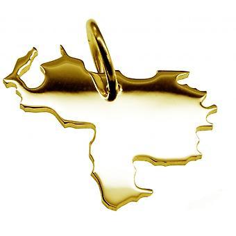 Hänge karta kedja hänge i guldgult-guld i form av VENEZUELA
