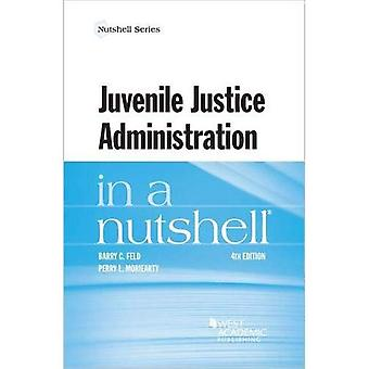 Juvenile Justice Administration in a Nutshell (Nutshell Series)