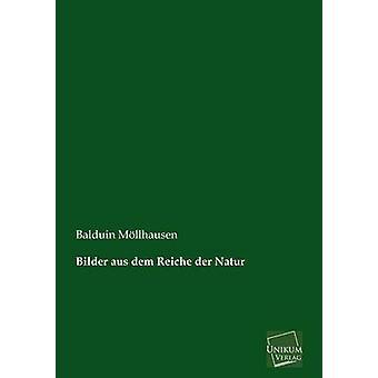 Bilder aus dem Reiche der Natur by Mllhausen & Balduin