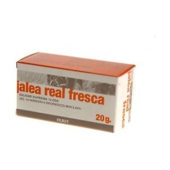Fresh Jelly 20 g