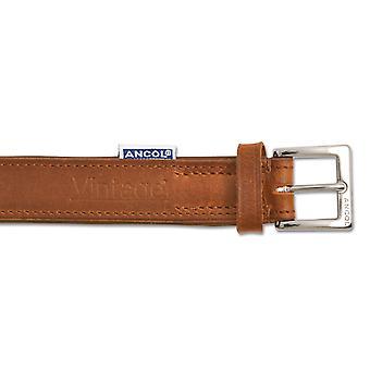 Pet leashes heritage vintage leather padded collar chestnut 50-59cm sz 7