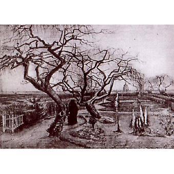 Winter Garden,Vincent Van Gogh,60x40cm