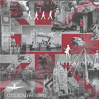 Muriva Britania Fotografisches Stadtbild Hintergrundbild Schwarz Weiß Metallic Wahrzeichen