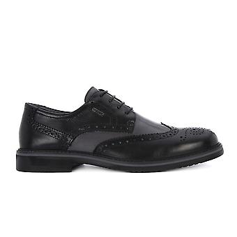 IGI&CO Alfa Nero 8678 universal all year men shoes