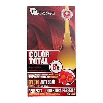 Permanent Anti-Ageing Dye Azalea Intense ruby
