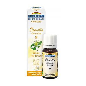 Clematis Organic Granules 300 granules