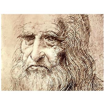 Print on canvas - Self-Portrait - Leonardo da Vinci - Painting on Canvas, Wall Decoration