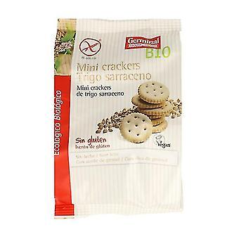 Buckwheat Mini Crackers Gluten Free Bio 100 g