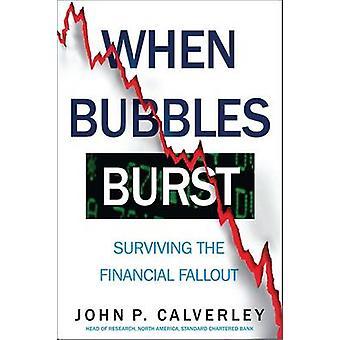 When Bubbles Burst - Surviving the Financial Fallout by John P. Calver