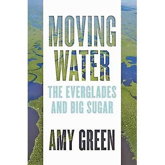 Moving Water The Everglades and Big Sugar