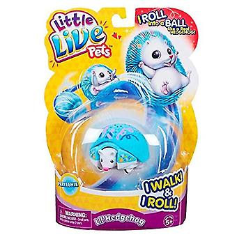 Little Live Pets Hedgehog