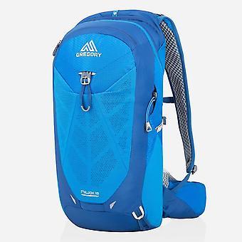 New Gregory Miwok 18L Backpack travel Bag Blue