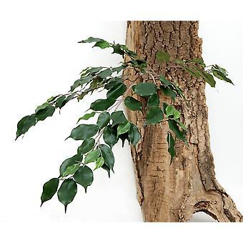 Artificial Silk Ficus Exotica Spray FR