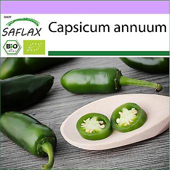 Saflax - 20 frø - Organic - Hot Chili Pepper - Tidlig Jalapeno - BIO - Piment - Tidlig jalapeno - BIO - Peperoncino - Tidlig Jalapeno - Ecológico - Chile - Jalapeño Temprano - BIO - Chili - Tidlig Jalapeno