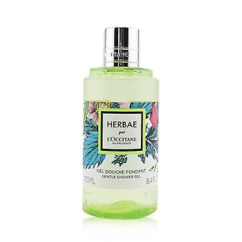 L'Occitane Herbae Par Gentle Shower Gel 250ml/8.4oz