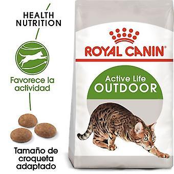Royal Canin  Outdoor 30 Pienso para Gato Adulto de Exterior (Gatos , Comida , Pienso)