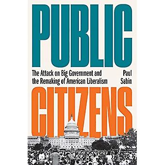 Public Citizens  The Attack on Big Government and the Remaking of American Liberalism by Paul Sabin
