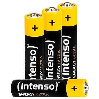 Batteries INTENSO 7501414