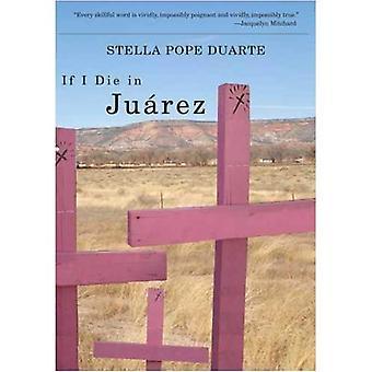 Om jag dör i Juarez (Camino Del Sol)
