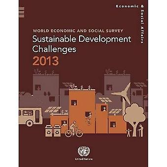 Wereld economische en sociale enquête 2013