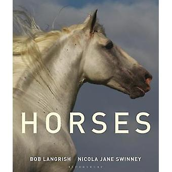 Horses by Horses - 9781472962416 Book