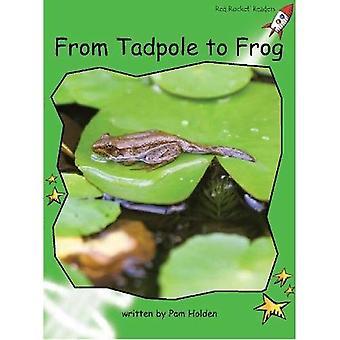 Van Tadpole tot kikker (rode raket lezers)